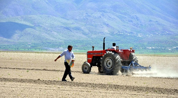 Kimyasal ilaç kullanmayan çiftçiye destek