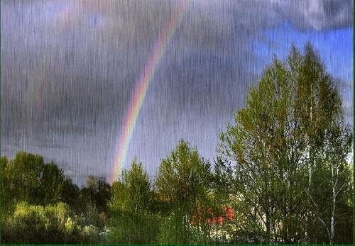 Yağmur üreticiyi umutlandırdı