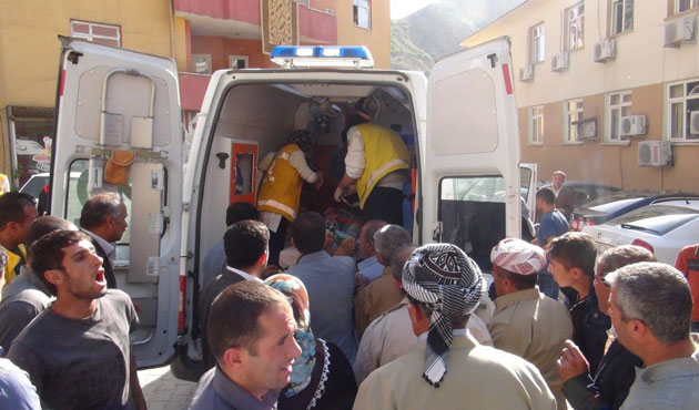 Şemdinli'de mayın patlaması sonucu iki kişi yaralandı