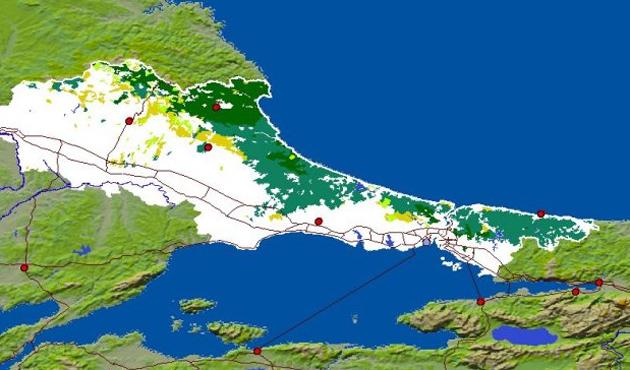 İstanbul'un ormanlık alanı yüzde 50'nin altında