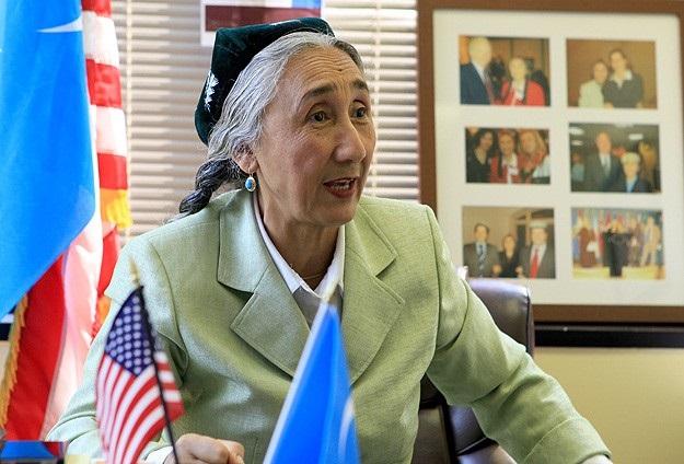 Rabia Kadir: Çin Uygurlara savaş ilan etti