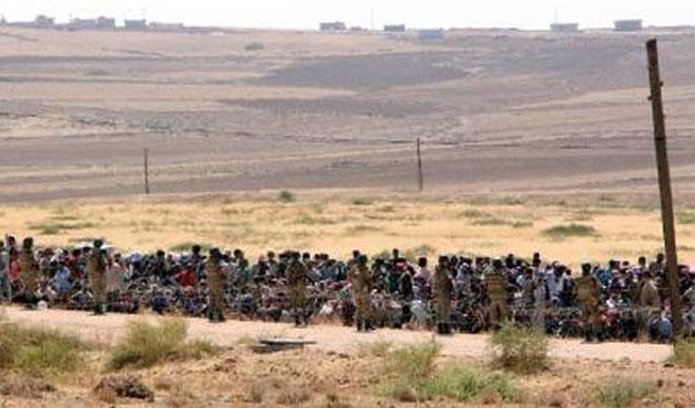 Türkiye'ye gelen Suriyeli Kürtler 60 bini aştı