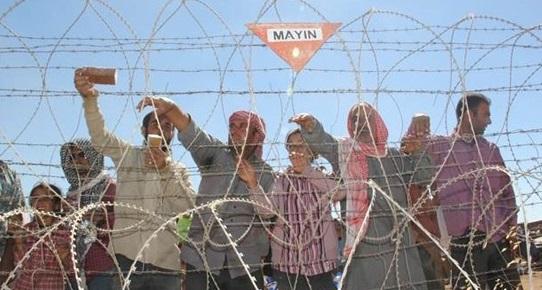 Suruç'a sığınanların sayısı 80 bine yaklaştı