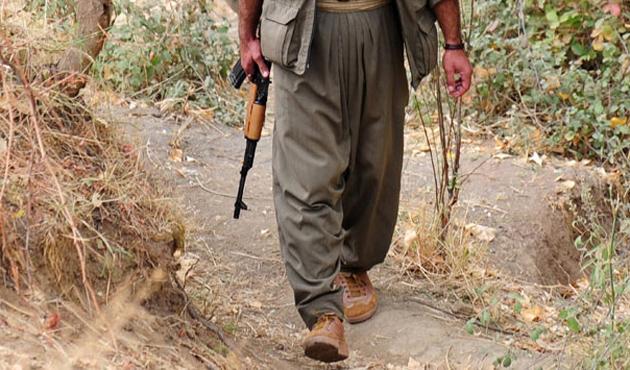 Teslim olan PKK'lı sayısı 724'e ulaştı