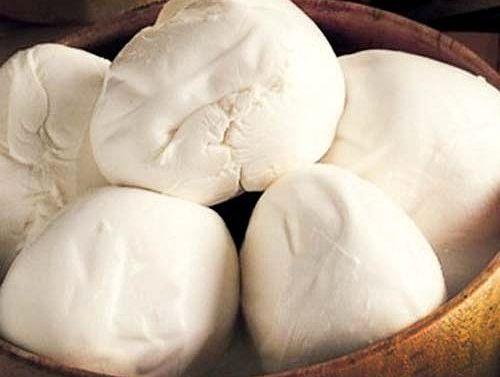 Evde peynir yapımı