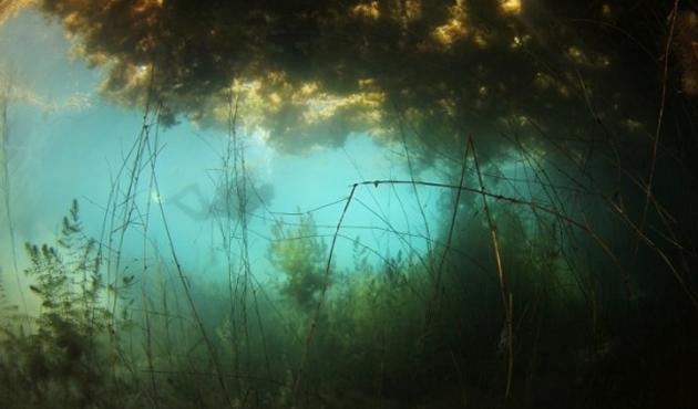 Sakarya Nehri'nin kaynağı görüntülendi-FOTO