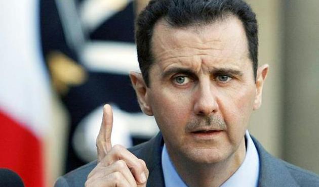Göçmen kuşların güvenliğini Esad sağlayacak!