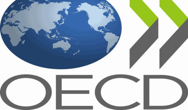 Türk temsilcisi, OECD İcra Komitesi başkanı oldu