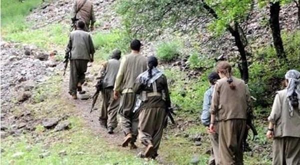 Şırnak ve Bitlis'te iki PKK'lı teslim oldu