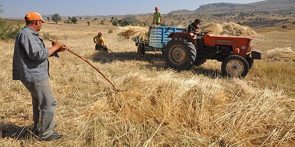 Tarımsal desteğe enerji de eklenecek