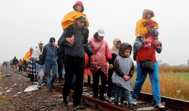 Hollande: Sığınmacılar Türkiye'de kalmalı