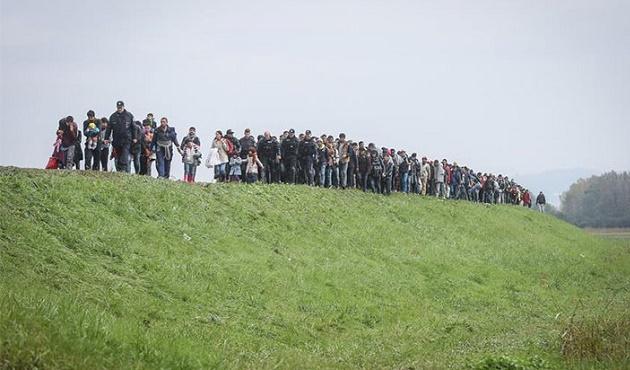 Avusturya'da sığınmacı krizi büyüyor