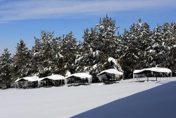 Türkiye'nin donan ilçesi 'soğuk tazminatı' istiyor