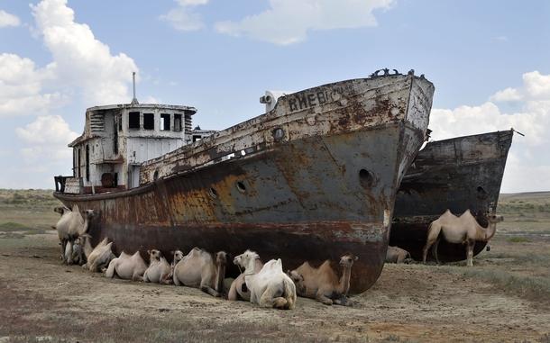 Aral gölüne 9 milyon dolar yardım