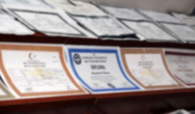 Sahte diploma operasyonunda 15 gözaltı