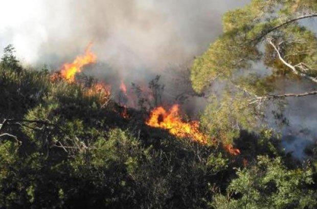 Antalya'daki turizm bölgesinde yangın