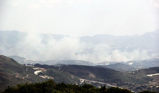 Lazkiye'de bombardıman sonucu ormanlar yanıyor