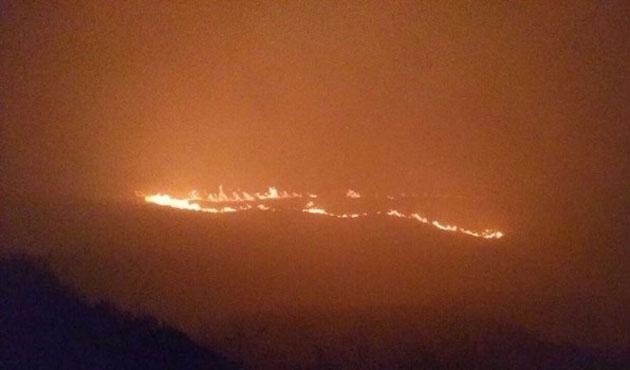 Avşa'daki yangın altı saatte söndürülebildi