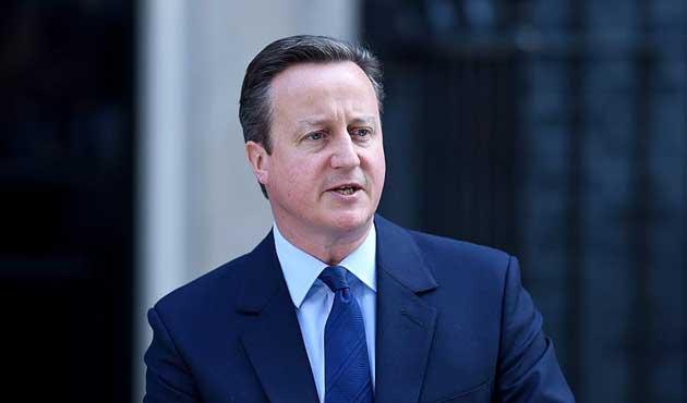 David Cameron'a yeni görev