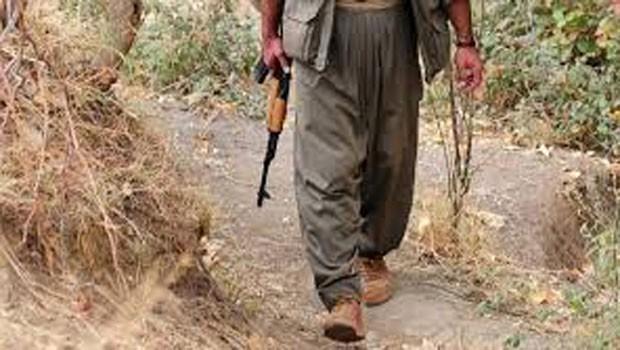 Van'da bir PKK'lı teslim oldu