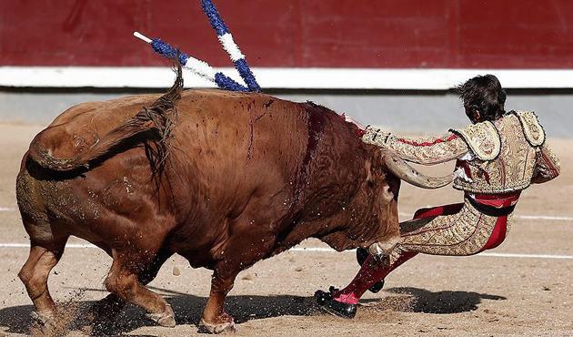 İspanya'da boğa güreşi yasağı krize dönüştü