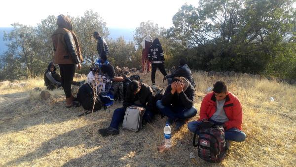 Ayvacık'ta 22 mülteci yakalandı