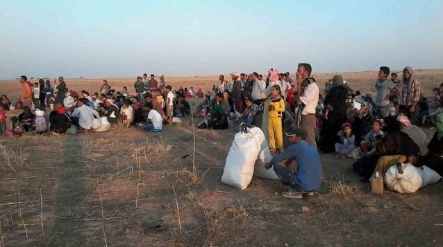 Suriye sınırına yüzlerce çadır
