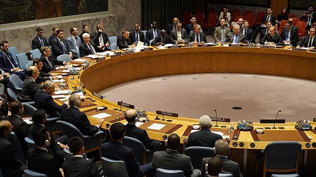 BM Güvenlik Konseyi Suriye'de ateşkes kararını kabul etti
