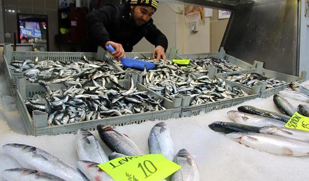 'Balık fiyatları tavan yaptı'