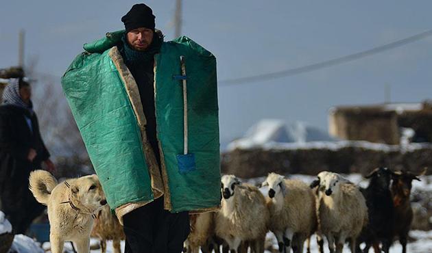 Yazın koyun güttüğü dağlarda kışın kayak öğretiyor