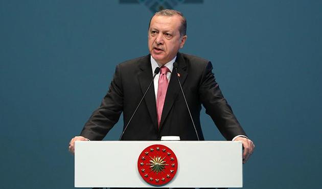Erdoğan'dan Hollanda'ya yaptırım çağrısı