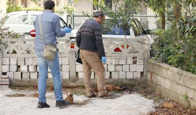Antalya'da apartman bahçesinde el bombaları
