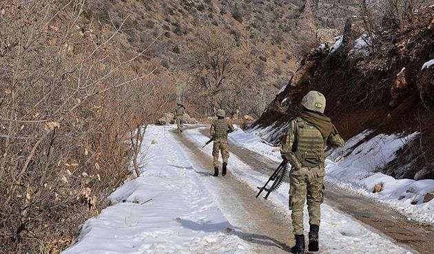 Komiser ve eşini şehit eden 'gri' kategorideki PKK'lı öldürüldü