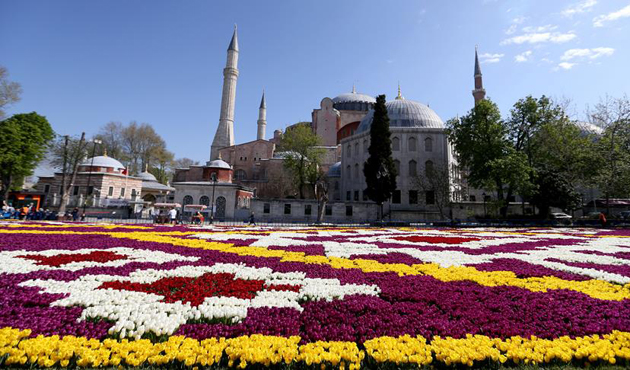 Sultanahmet'te 1453 metrekarelik 'lale halısı' hazırlandı   VİDEO