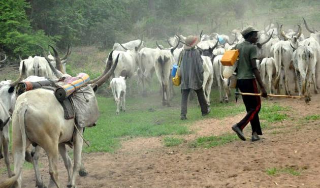Nijerya'da 13,7 milyar dolar otlak zararı
