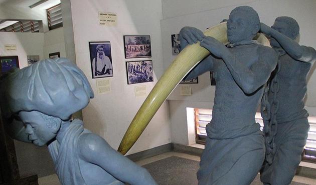 İnsanlığın ve sömürgeciliğin tarihi Darüsselam Müzesi'nde | FOTO