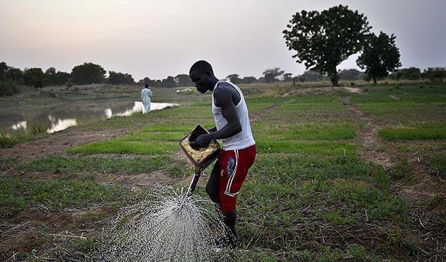 Kongo'da çiftçilerin 'iklim değişikliği' tedirginliği