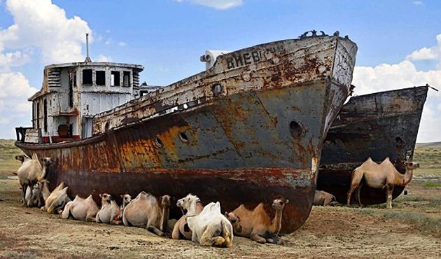 Aral Denizi'ni kurtarmak için İcra Komitesi kuruldu