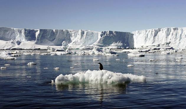 Antarktika'dan kopan dev buz dağı okyanusa açılıyor