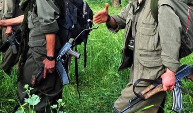 Bitlis'te yeşil listedeki terörist öldürüldü
