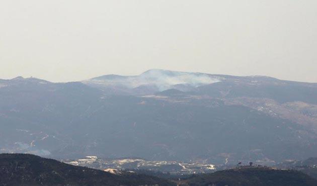 Suriye sınırındaki orman yangını kontrol altında