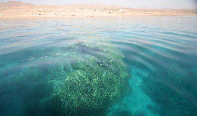 Suudi Arabistan'dan 'Kızıldeniz turizm projesi'