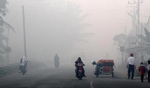 Endonezya'da kasıtlı orman yakanlar için 'vur' emri