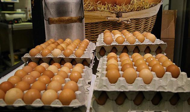 Avrupa'daki zehirli yumurta krizi Danimarka'ya sıçradı