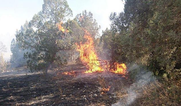 Balıkesir'de evde çıkan yangın ormana sıçradı