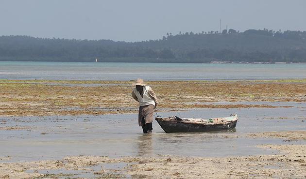 Doğası zengin ama halkı yoksul bir ada: Zanzibar