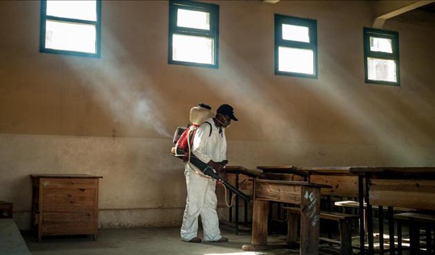 Madagaskar'daki veba salgınında ölü sayısı 48'e yükseldi