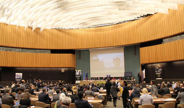 Arakan için uluslararası yardım konferansı başladı