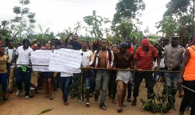Kamerun'da özerklik krizi