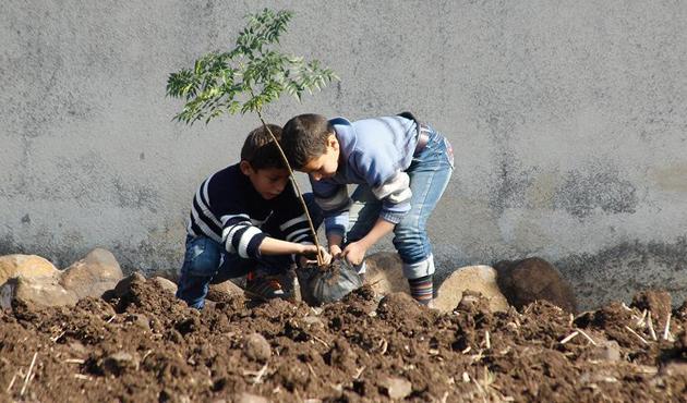 Humus'ta çocuklar 'umut dikiyor'
